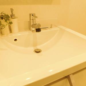 メイツ新宿なつめ坂(3階,4299万円)の化粧室・脱衣所・洗面室