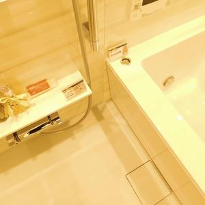 メイツ新宿なつめ坂(3階,4299万円)の浴室・お風呂