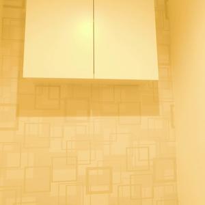 メイツ新宿なつめ坂(3階,4299万円)のトイレ
