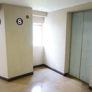マンション雅叙苑5号棟のエレベーターホール、エレベーター内