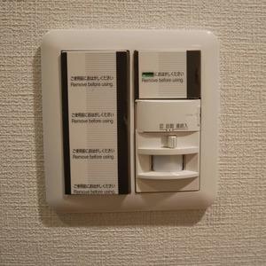 フィールA飯田橋(4階,)のお部屋の玄関