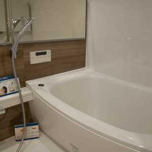 グランドメゾン飯田橋(4階,4499万円)の浴室・お風呂