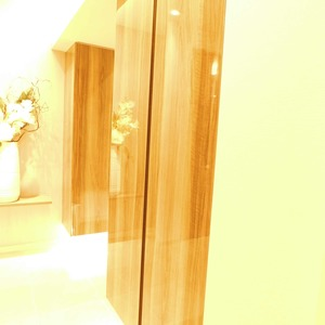 マンション高輪苑(3階,5480万円)のお部屋の玄関