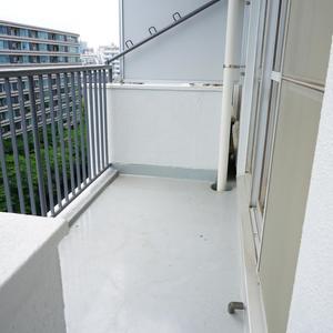 マンション雅叙苑5号棟(8階,5580万円)のバルコニー