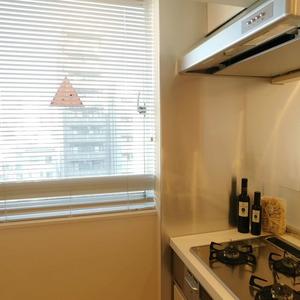 ダイアパレス白山第2(7階,)のキッチン