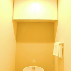 ダイアパレス白山第2(7階,)のトイレ
