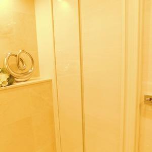 フォルティア文京千石(3階,4980万円)のお部屋の廊下