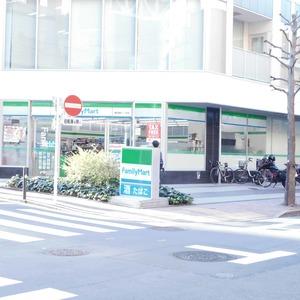 シティタワー九段下の周辺の食品スーパー、コンビニなどのお買い物