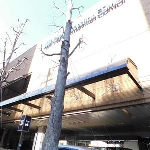 シティタワー九段下のその他周辺施設