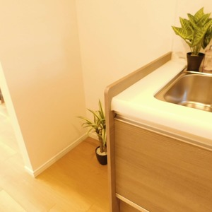 カーネ西早稲田(4階,4290万円)のキッチン