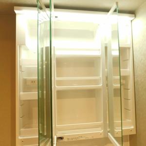 カーネ西早稲田(4階,4290万円)の化粧室・脱衣所・洗面室