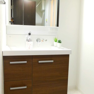 レインボー目白(4階,4250万円)の化粧室・脱衣所・洗面室