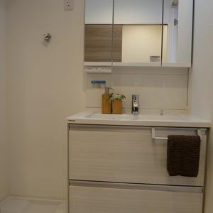 日興パレス秋葉原(5階,)の化粧室・脱衣所・洗面室