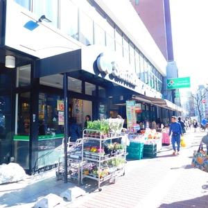グリーンヒル小石川の周辺の食品スーパー、コンビニなどのお買い物