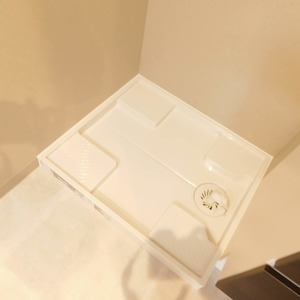 グリーンヒル小石川(5階,)の化粧室・脱衣所・洗面室