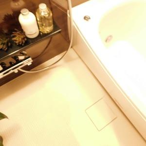 グリーンヒル小石川(5階,)の浴室・お風呂