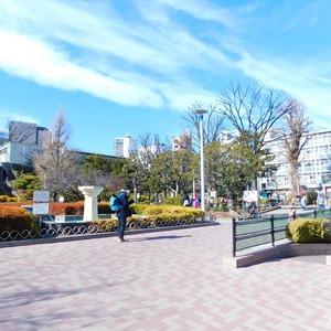 セレナハイム小石川西館の近くの公園・緑地