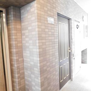 セレナハイム小石川西館(3階,)のフロア廊下(エレベーター降りてからお部屋まで)