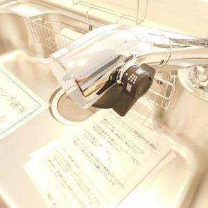 セレナハイム小石川西館(3階,)のキッチン