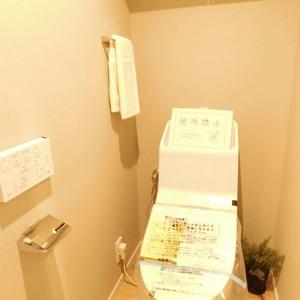 セレナハイム小石川西館(3階,)のトイレ