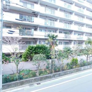 プレシス文京小石川静穏の杜(2階,7680万円)のお部屋からの眺望