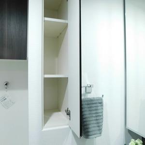 プレシス文京小石川静穏の杜(2階,7680万円)の化粧室・脱衣所・洗面室