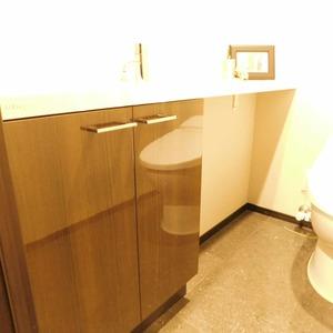 インペリアルガーデン(3階,)のトイレ