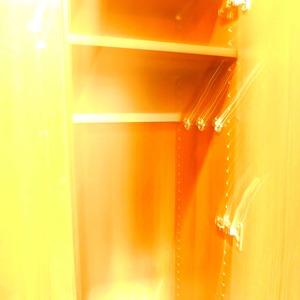 インペリアルガーデン(3階,)のお部屋の玄関