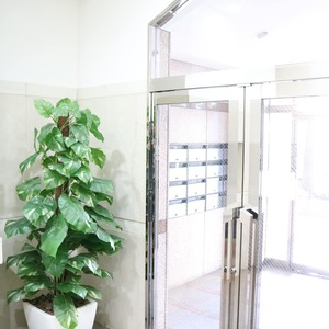 エクレーヌ本駒込のエレベーターホール、エレベーター内