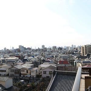 エクレーヌ本駒込(6階,5980万円)のお部屋からの眺望