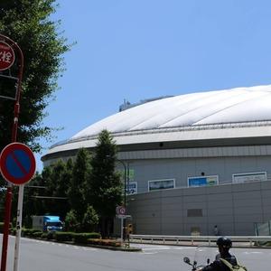 プレシス文京小石川静穏の杜の最寄りの駅周辺・街の様子