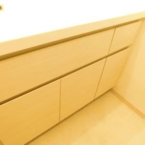 クレヴィア神楽坂(5階,)の化粧室・脱衣所・洗面室