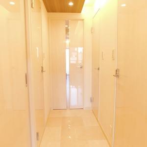 ラフォルム神楽坂(4階,)のお部屋の廊下