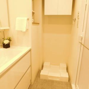 ラフォルム神楽坂(4階,)の化粧室・脱衣所・洗面室