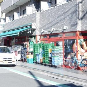 クレヴィア神楽坂の周辺の食品スーパー、コンビニなどのお買い物