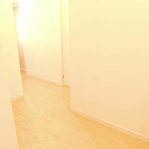 落合マンション(5階,4390万円)のお部屋の廊下