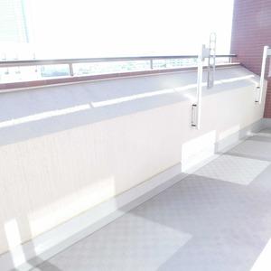 ディアナコート恵比寿(13階,1億9800万円)のバルコニー