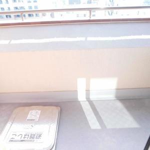 ディアナコート恵比寿(13階,1億9800万円)の洋室