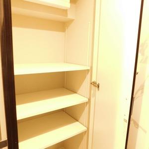 ディアナコート恵比寿(13階,1億9800万円)のお部屋の廊下