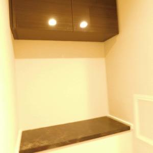 ディアナコート恵比寿(13階,1億9800万円)のトイレ
