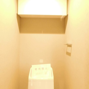クレール五反田(8階,3880万円)のトイレ