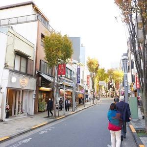 ラフォルム神楽坂の最寄りの駅周辺・街の様子
