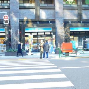 セレナハイム小石川西館の周辺の食品スーパー、コンビニなどのお買い物