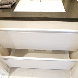 コンフィール赤堤(5階,)の化粧室・脱衣所・洗面室
