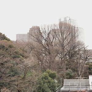 白金台パークサイドハイツ(5階,3780万円)のお部屋からの眺望