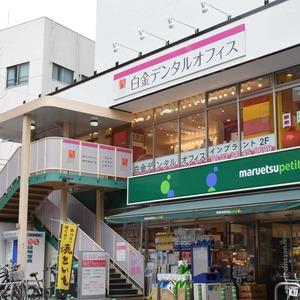 白金台パークサイドハイツの周辺の食品スーパー、コンビニなどのお買い物