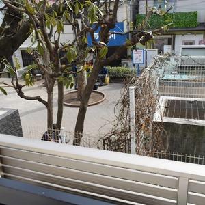 サンアリーナ広尾(3階,1億2600万円)のバルコニー
