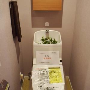 中銀南青山マンシオン(2階,4790万円)のトイレ