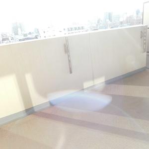 ヴィルヌーブ西早稲田(6階,6980万円)のバルコニー