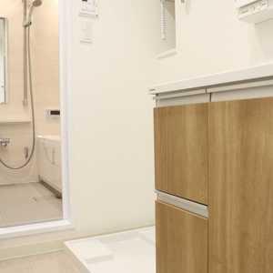 上野ロイヤルハイツ(7階,)の化粧室・脱衣所・洗面室